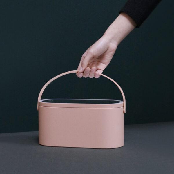 Striking Storage Bins With Lids | Portable Plastic Box